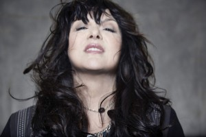Ann Wilson Press Photo